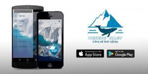 icebergs, whales, tours, nl, newfoundland, app, sightings